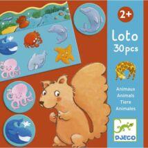 Képeslottó - Állatok élőhelye - Animals- DJECO