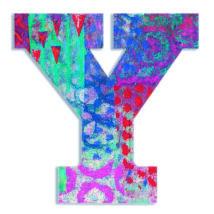 Dekorbetű - Y -  Peacock letter- DJECO