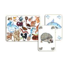 Kártyajáték - Állati kereső - Zanimatch - DJECO
