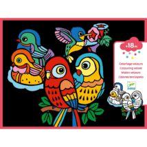 Bársony színező - Madárfiókák - Baby birds- DJECO