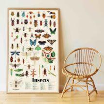 Kreatív, fejlesztő óriásplakát, 44 matricával - Rovarok - Poppik