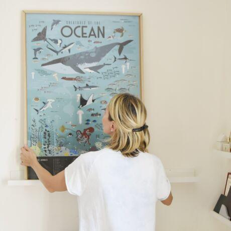 Kreatív, fejlesztő óriásplakát, 59 matricával - Óceán - Poppik