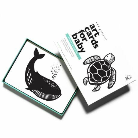 Wee Gallery fejlesztő kártyák babáknak - Ocean - Óceán